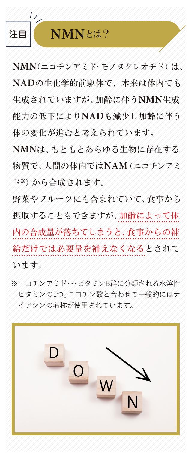 NMNとは?